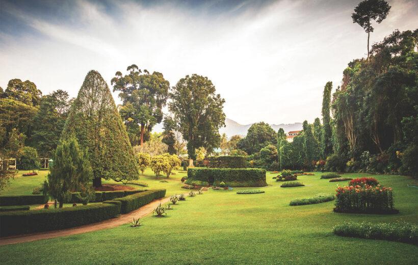 Питомник слонов + ботанический сад Перадения + храм Зуба Будды